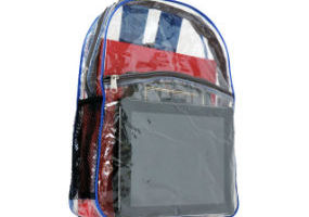 Clear Vinyl iPad Backpack